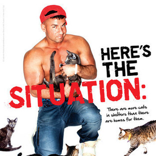The Situation Shirtless Picture