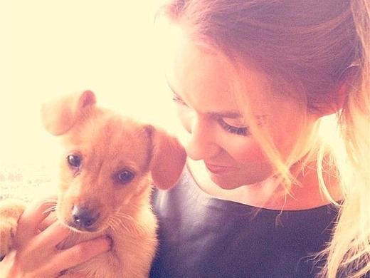 Lauren Conrad, Puppy
